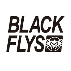 BLACKFLYS